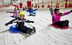 xscape sled